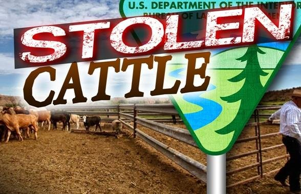 41 pairs of cows and calves have been stolen in southeastern Idaho.