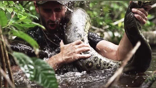 Although the title and a promotional video indicated that naturalist Paul Rosolie would be swallowed by a giant anaconda, Sunday's pre-taped special didn't go that far.