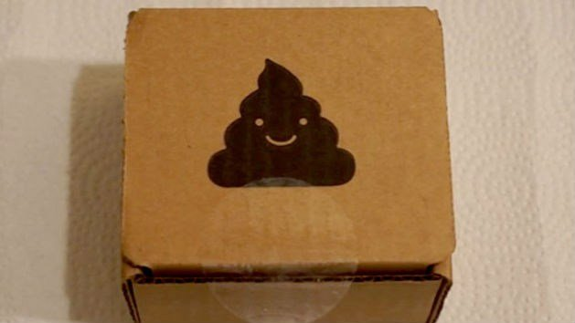 Buyers who bought the poop were greeted with a happy poo emoji! (PHOTO: YouTube)