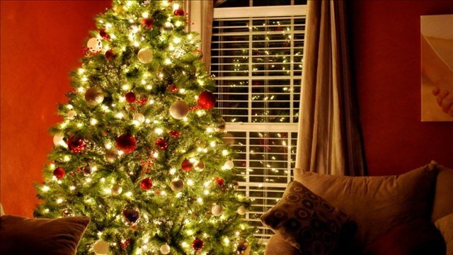 Without proper care, Christmas trees can go from decorative to dangerous in seconds.