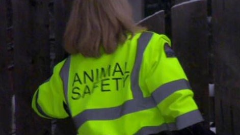 The winter months keep Post Falls Police Department Animal Control officers busier than normal.