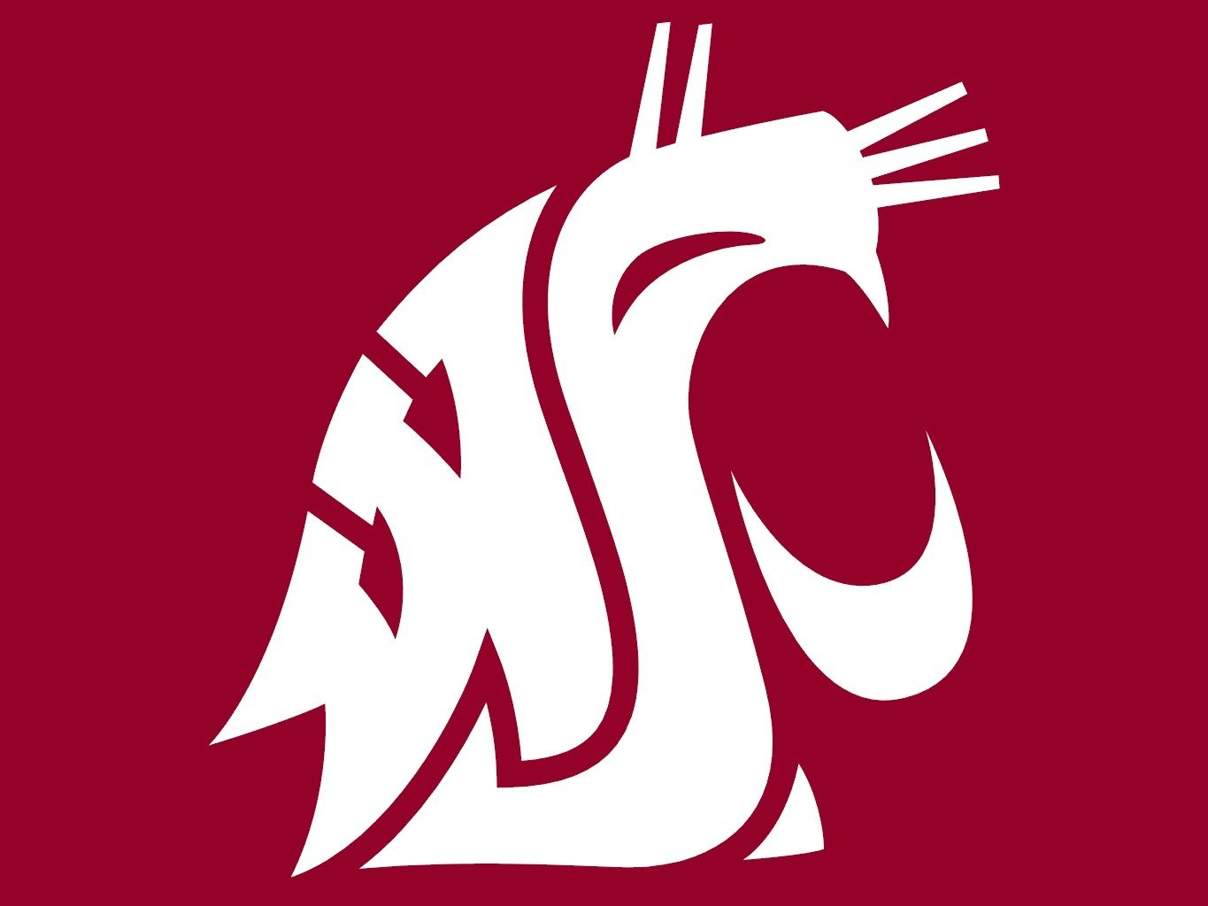 WSU to review student conduct process