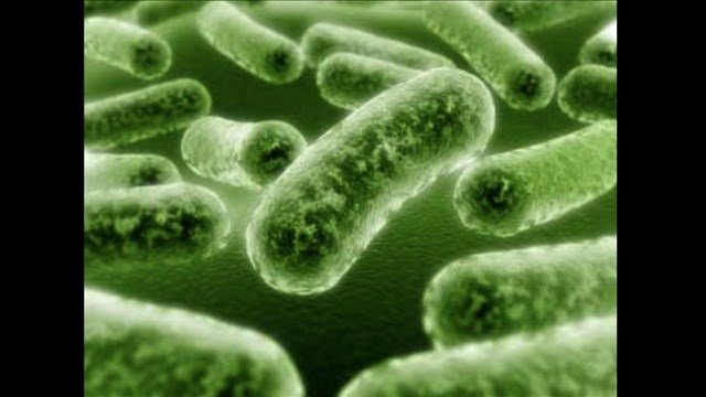 An outbreak of listeria originating from a Yakima cheese maker has killed one person