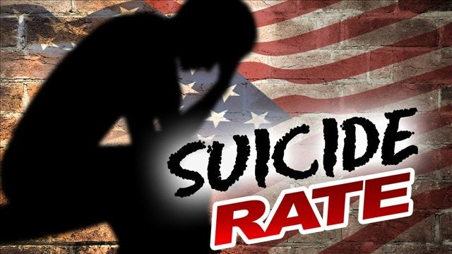 A bill aimed at reducing a suicide epidemic among military veterans has cleared a Senate committee, and lawmakers say they hope the measure will soon be signed into law by President Barack Obama.