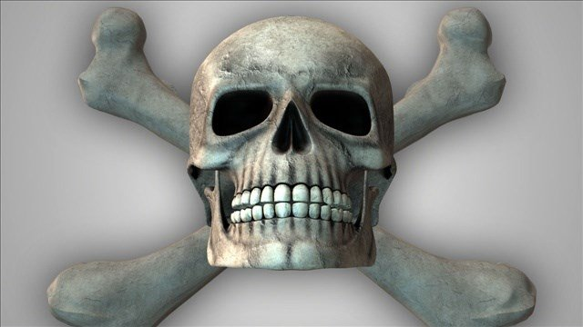 A skull and bones were uncovered by workers digging a septuc drain field for a cabin on bainbride Island. The remains are believed to be more then 100 years old.
