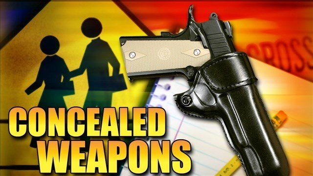 Bill would allow concealed guns without a permit