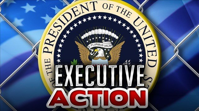Obama's executive action aims to spare from deportation as many as five million people who are in the U.S. illegally.