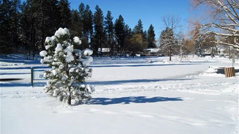 Is Winter over for 2015? (PHOTO of Manito Park in February 2014 courtesy of  	Teenyboy in Spokane)