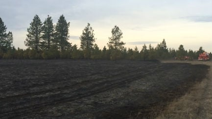 The scene of a more than 30-acre grass fire in Athol.