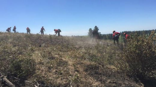 Inmates from Geiger Corrections were on scene Tuesday morning working to maintain the fire line by clearing stumps and overturning white spots.