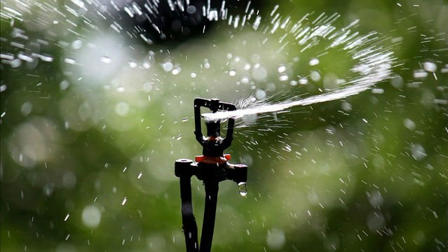 The Mayor and Council are asking citizens to take steps to reduce their water use this summer.
