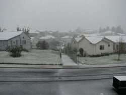Snow in Pullman (Mike McIlvenna)