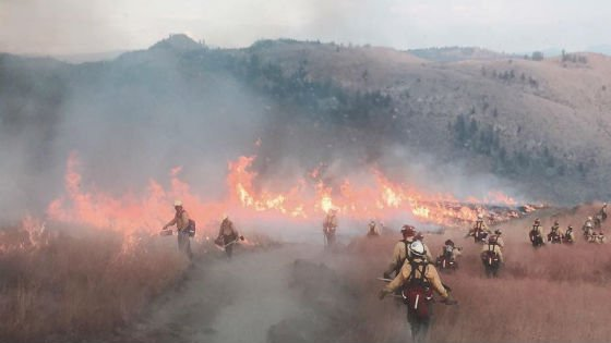 Firefighters battling the Okanogan Complex fire. Photo: Kris Hayes Torgeson