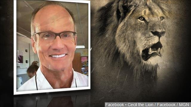A Zimbabwe Cabinet minister says the country is no longer pressing for the extradition of James Walter Palmer, an American dentist who killed a well-known lion called Cecil.
