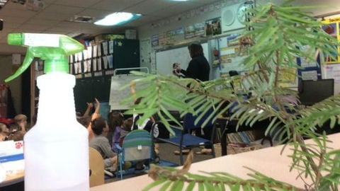 Kindergarteners at Hamblen are hoping to help those affected by wildfires.