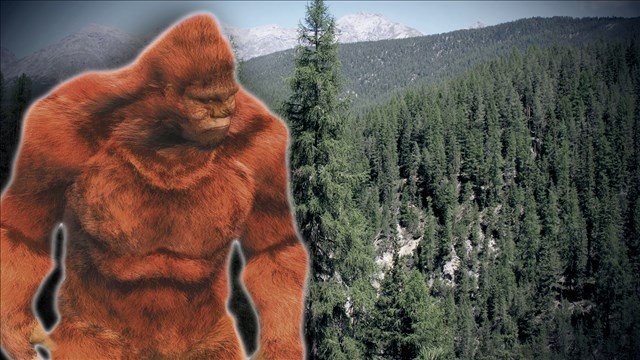Bigfoot believers have gathered in western New York and some insist the legendary Sasquatch's footprint is getting bigger.