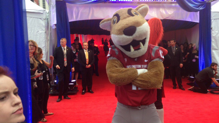 Butch T. Cougar made an appearance at the CMA Awards Wednesday night, much to the delight of WSU fans.