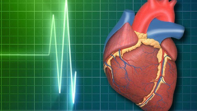 The groups announced the venture Sunday at a heart association conference in Orlando.