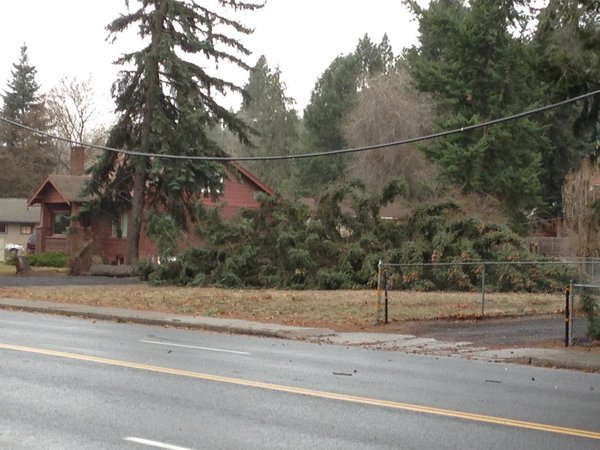 The City of Spokane has extended storm debris pickup.