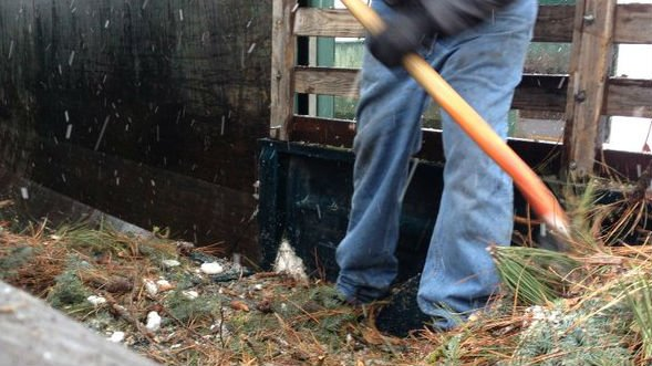 More than a month after the windstorm hit, Saturday was the last day for free storm debris disposal.