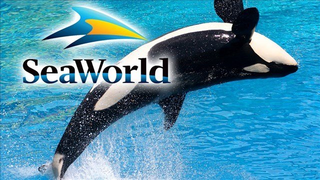 SeaWorld has filed a lawsuit challenging a California commission ruling that bans the company from breeding captive killer whales at its San Diego park.