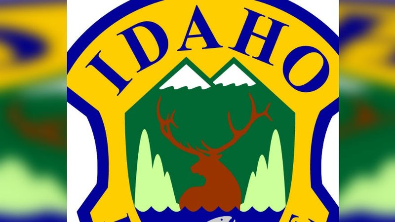 Wildlife officials to feed elk to keep them off roads for Idaho dept of fish and game
