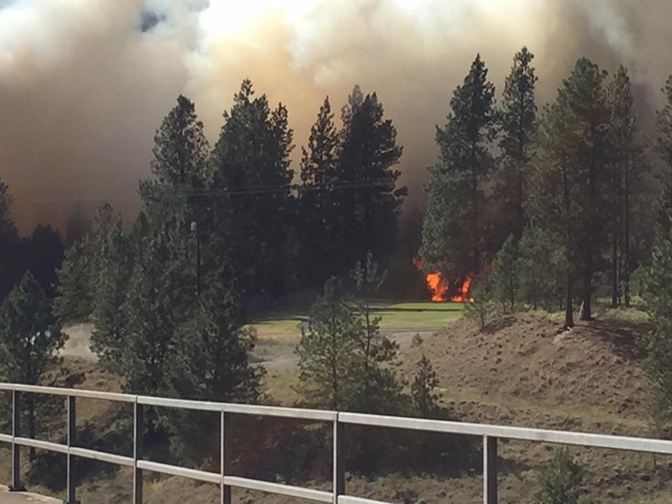 Indian Canyon fire, photo credit: Ryan Oelrich